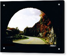 Acrylic Print featuring the photograph Tunnel Vision by Seth Weaver