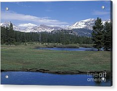 Acrylic Print featuring the photograph Tuolomne Meadows In June by Stan and Anne Foster
