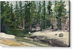 Tuolumne River Acrylic Print by Donald Maier