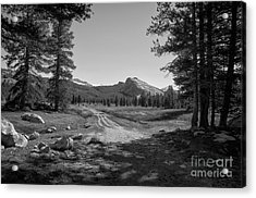 Tuolumne Trail Visit Www.angeliniphoto.com For More Acrylic Print