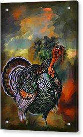 Turkey  Acrylic Print by Andrzej Szczerski