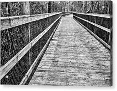 Turkey Creek Boardwalk Acrylic Print