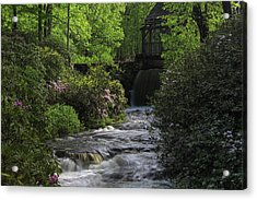 Turkey Hill Brook In Moore State Park Acrylic Print by Juergen Roth