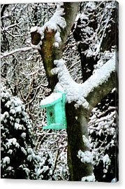 Turquoise Birdhouse In Winter Acrylic Print by Susan Savad