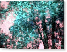Turquoise Forest Acrylic Print by Carolyn Stagger Cokley