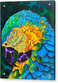 Turquoise Gold Macaw  Acrylic Print by Daniel Jean-Baptiste