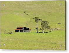 Acrylic Print featuring the photograph Turri Road - San Luis Obispo Ca by Art Block Collections
