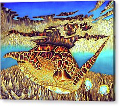 Caribbean Sea Turtle And Stag Horn Coral Acrylic Print