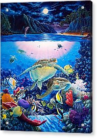 Turtle Bay Acrylic Print by Daniel Bergren