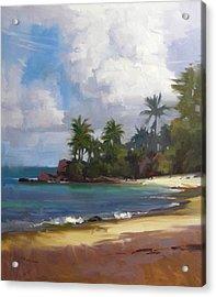 Turtle Beach Acrylic Print by Richard Robinson