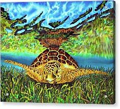 Turtle Grass Acrylic Print