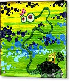 Turtle Guy Acrylic Print by Dan Keough