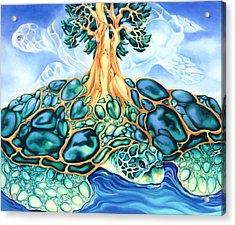 Turtle Island Acrylic Print by Marcia Snedecor