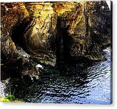 Turtle Isle Acrylic Print