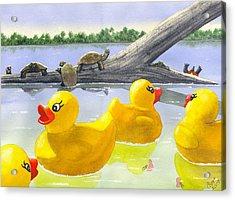 Turtle Log Acrylic Print