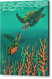 Turtle Love Acrylic Print by Darice Machel McGuire