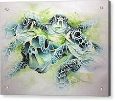 Turtle Soup Acrylic Print