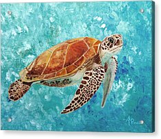 Turtle Swimming Acrylic Print