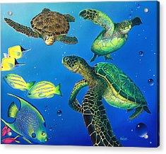 Turtle Towne Acrylic Print by Angie Hamlin