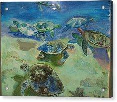 Turtles Acrylic Print by Aline Kala