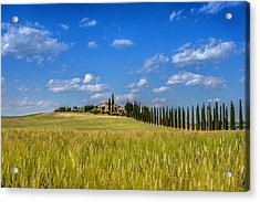 Tuscan Estate 2 Acrylic Print