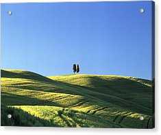 Tuscan Evening Acrylic Print by Michael Hudson