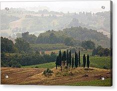 Tuscan Landscape Acrylic Print by Stefan Nielsen