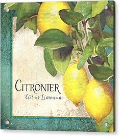 Tuscan Lemon Tree - Citronier Citrus Limonum Vintage Style Acrylic Print