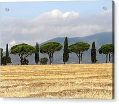 Acrylic Print featuring the digital art Tuscany Trees by Julian Perry