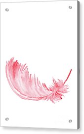Pink Feather, Tutu Down Feather Painting, Baby Girl Kids Room Nursery Wall Decor Acrylic Print