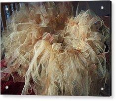 Tutu Acrylic Print by Judith Desrosiers
