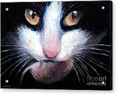 Tuxedo Cat With Mouse Acrylic Print by Svetlana Novikova