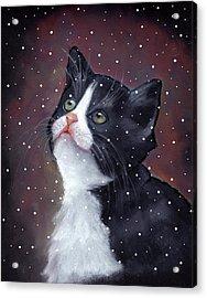 Tuxedo Cat With Snowflakes Acrylic Print