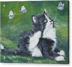 Tuxedo Kitten Acrylic Print by Lee Ann Shepard