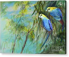 Two Pale-faced Rosellas Acrylic Print
