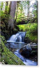 Twentytwo Creek Acrylic Print by Pelo Blanco Photo