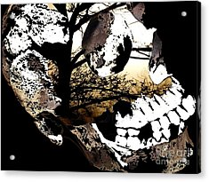 Twigs Acrylic Print