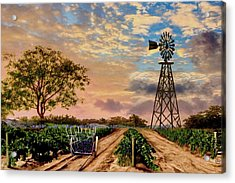 Twilight At The Vineyard Acrylic Print