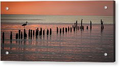 Twilight Colors Acrylic Print