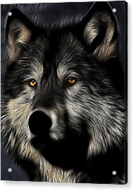 Twilight Eyes Of The Lone Wolf Acrylic Print by Wingsdomain Art and Photography