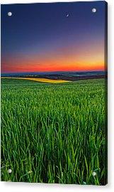 Twilight Fields Acrylic Print