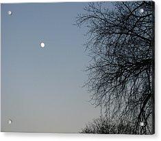 Twilight Acrylic Print by Hasani Blue