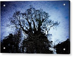 Twilight Illusion 2010 Acrylic Print by Sachiko Ide
