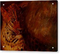 Twilight Leopard Acrylic Print by Arlene Rabinowitz