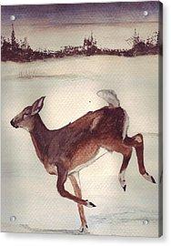 Twilight Run Acrylic Print by Debra Sandstrom