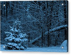 Twilight Snow Acrylic Print