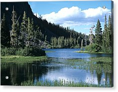 Twin Lakes And Ducks Feeding Acrylic Print