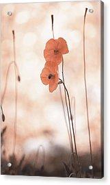 Twins Aliens. Orange Poppies Acrylic Print