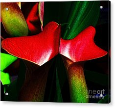 Acrylic Print featuring the photograph Twins by Elfriede Fulda