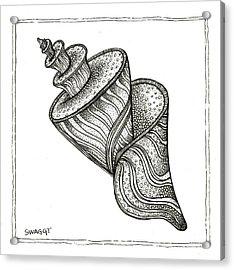 Twirly Shell Acrylic Print by Stephanie Troxell